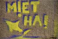 """gelbes Graffito mit einem Hai und dem Text """"Miethai"""""""