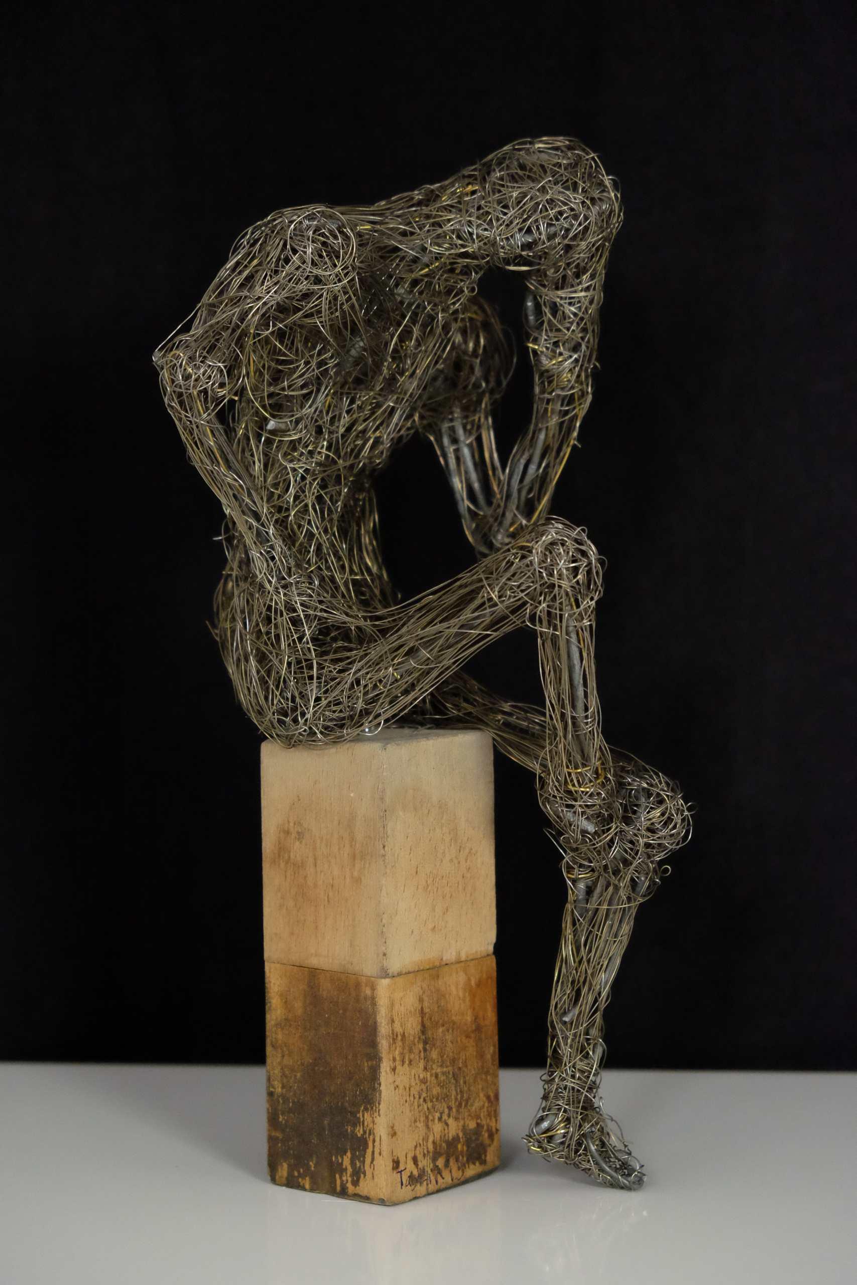Drahtgeflecht Denker von Murat Taskin